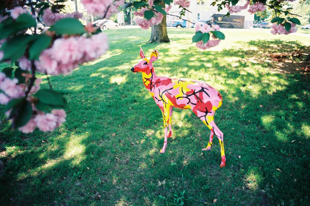 UBIQ-Vans-Ron-English-Deer_02